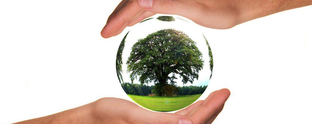 sustentabilidade_ambientes_contruidos